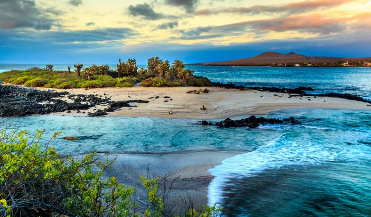 Galapagos travel guide featured image